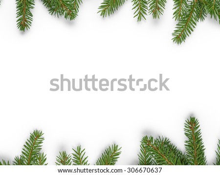 background from fir twigs with shadow, on white - stock photo