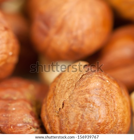 Background from  fresh ripe hazelnuts, square composition - stock photo