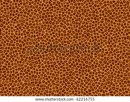 background from leopard - stock photo