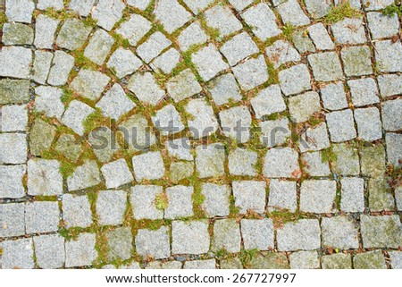 Background from paving stones and young green grass - stock photo