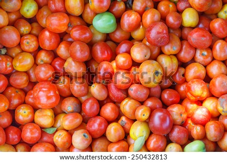 Background from picked tomatoes on the market - stock photo