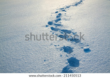 background from snow and traces on it - stock photo
