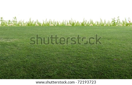 Background image of meadow - stock photo