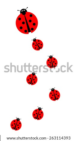 Background image with many different sized ladybugs on white background. - stock photo