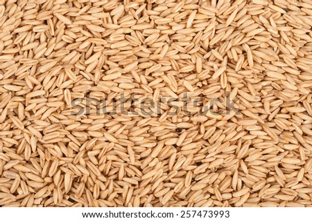 Background oats - stock photo