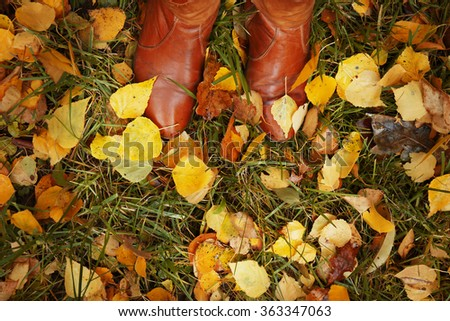 Background of colourful autumn leaves on the ground - stock photo