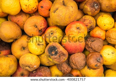 Background of dirty apples with varying degrees of decay - stock photo