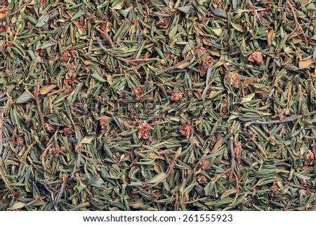 Background of dried herb - branches with leaves and flowers of Rhododendron adamsii - stock photo