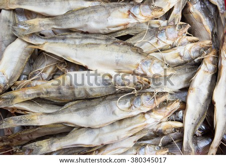 Background of dried pike perch - stock photo