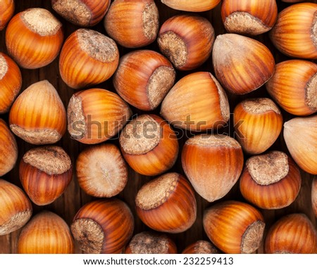 background of dried whole hazel nuts close-up - stock photo