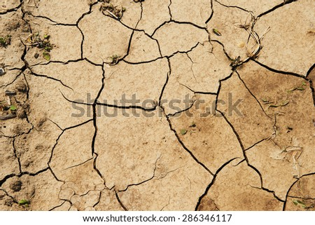Background of dry ground - stock photo
