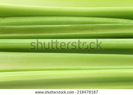 background of fresh celery stems - stock photo