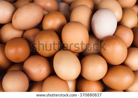 Background of fresh domestic eggs. Organic food. - stock photo