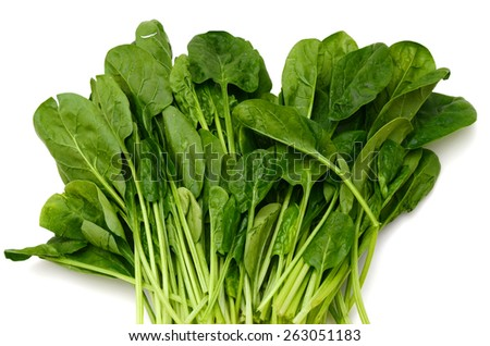 background of fresh green spinach isolated on white  - stock photo