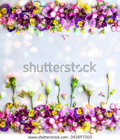 Background of fresh multicolored flowers - stock photo