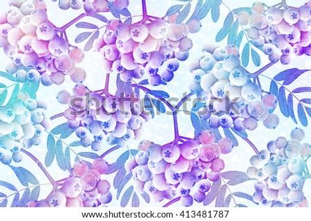 Background of frozen rowan berries - stock photo