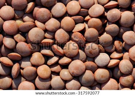Background of Lentils  - stock photo