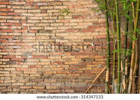 Background of old vintage brick wall and bamboo - stock photo