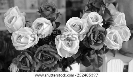background of rose, black and white effect - stock photo