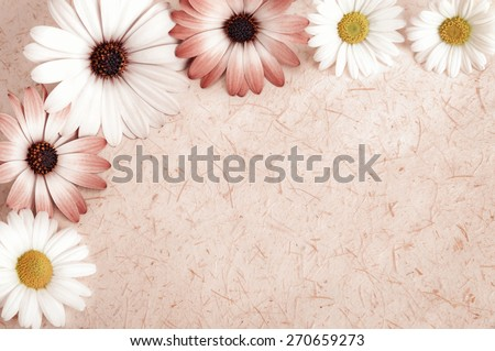 Background of rustic natural paper or parchment with a frame of cut flowers, vintage style with toned smooth colors - stock photo