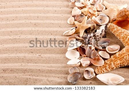 background of seashells and starfish on the beach sand - stock photo