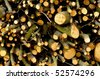 Background of small firewood branches - stock photo