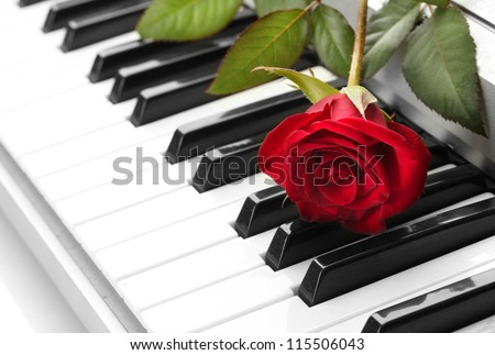 background of synthesizer keyboard with rose - stock photo