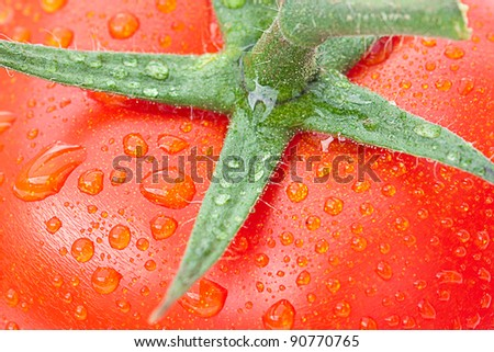 background of the tomato with water drops - stock photo