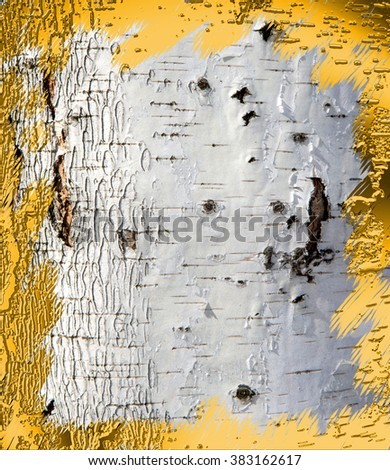 Background on the basis of birch bark texture framed with gold frame - stock photo