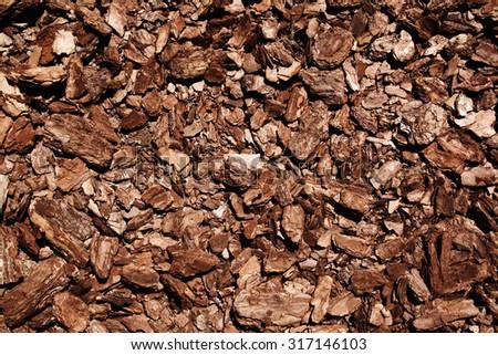 background pieces of tree bark - stock photo