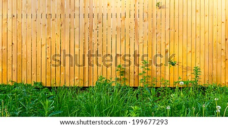 Background rustic wooden fence with thick green grass in front of it - stock photo