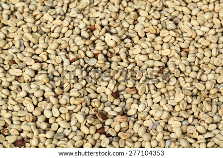 Background texture coffee beans are dried before roasting - stock photo