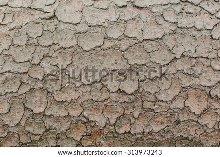 Background texture of barren dried cracked mud with an abstract random pattern conceptual of drought - stock photo