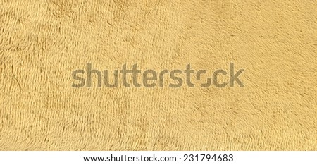 Background - texture of fur - beige - stock photo
