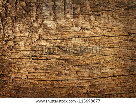 Background texture of old dead the tree - stock photo