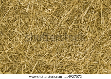 Background. The natural texture of dry straw - stock photo