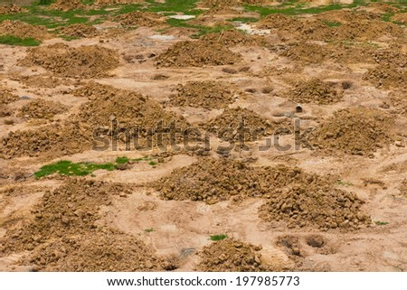 Background, top angle view of a pile of gravel and sand, which pitted. - stock photo