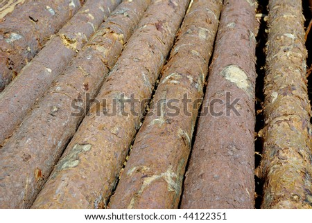 background with pine logs - stock photo