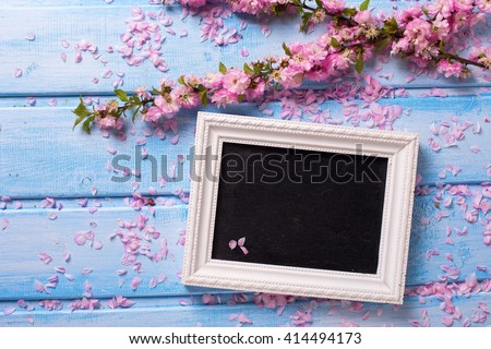 Background  with  sakura pink flowers  and empty blackboard on blue wooden planks. Selective focus. Place for text.  - stock photo