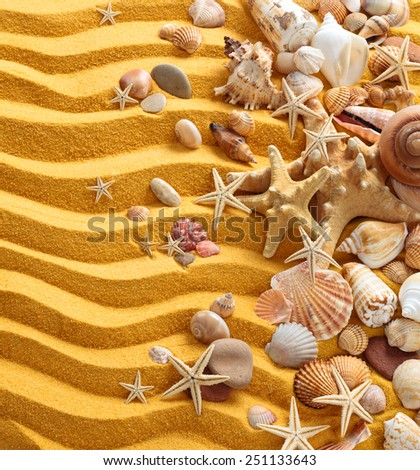 Background with  yellow  sand, shells and starfishes.  - stock photo