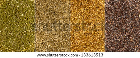 Backgrounds of malt seeds and dried hops - stock photo