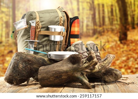 backpack and tree  and break in forest  - stock photo