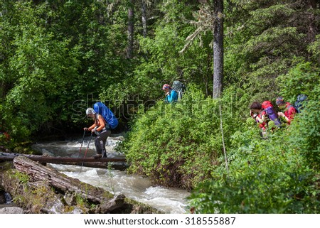 Backpacker is crossing mountain river by wooden log in Altai mountains, Russia - stock photo