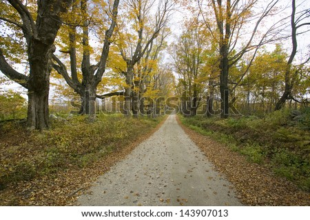 Backroads in autumn on Mohawk Trail in western Massachusetts, New England - stock photo