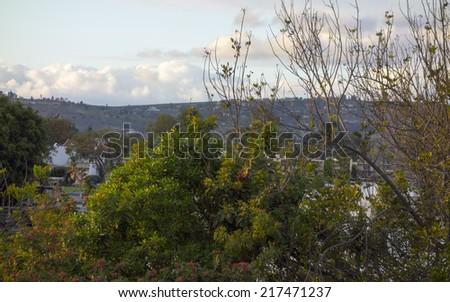 Backyard of residential community in city of Camarillo, California - stock photo