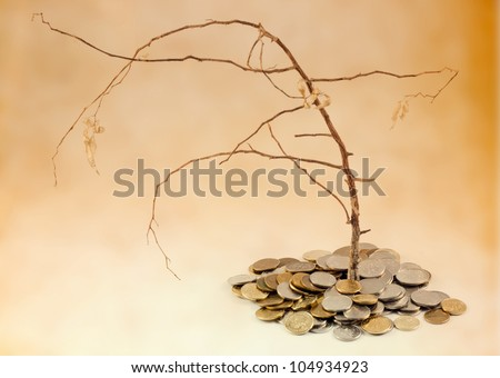 bad investment and withered tree with money - stock photo