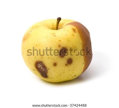 Bad rotten apple isolated on white background - stock photo