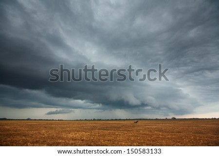 Bad weather is coming - stock photo