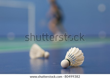badminton - badminton courts with two shuttlecocks (shallow DOF; color toned image) - stock photo