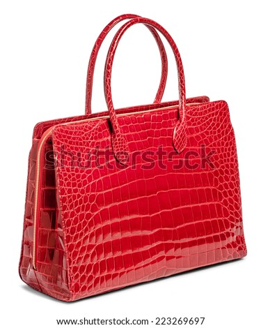 Bag from skin of crocodile on white background - stock photo